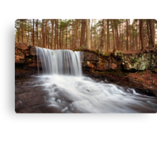 The Top of Dutchman Falls Canvas Print