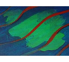 Green Blue & Red Abstract Photographic Print