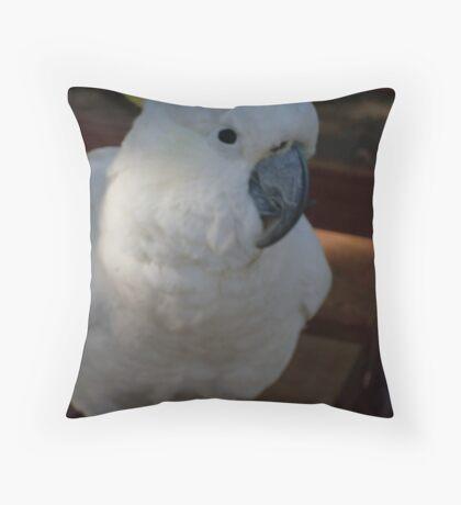Cocky Cocky Throw Pillow