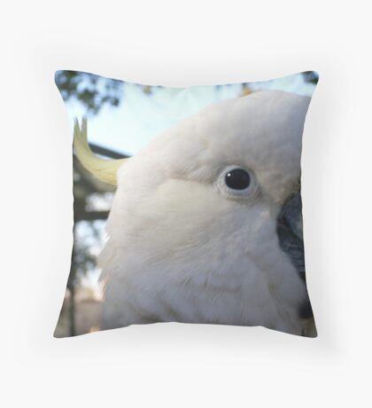 Cocky Cocky 2 Throw Pillow