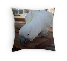 Cocky Cocky 4 Throw Pillow