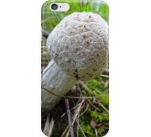 Roasted Mushroom iPhone Case/Skin
