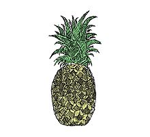 Pineapple Sketch Photographic Print