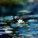 Water Lily Pond Impression by Darlene Lankford Honeycutt