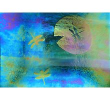 Magical Dragonfly Glass Photographic Print