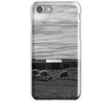 Rural Image iPhone Case/Skin