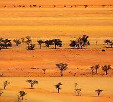 View from Kuiseb Pass , Namib Naukluft Park,  Namibia. by photosecosse /barbara jones