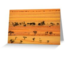 View from Kuiseb Pass , Namib Naukluft Park,  Namibia. Greeting Card