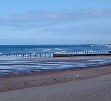 Blyth Beach..... by Dee009