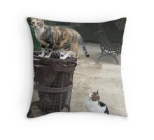 Hey, let me have a look too! Throw Pillow