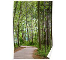 Lakeside Walk Poster