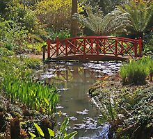 Subtropical Gardens, Abbotsbury by RedHillDigital