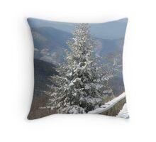 Spring snow Throw Pillow