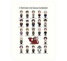 A Field Guide to the Common Cumberbatch (print/poster/card) Art Print