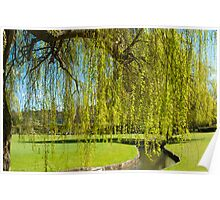Cry me a River: Weeping Willow Poster