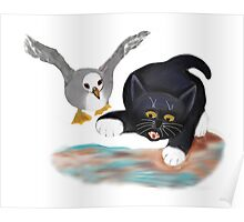 Seagull Chases Kitten on the Beach Poster