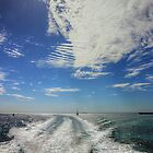 Welcome to Rottnest Island - A View From The Rottnest Express by Colin  Williams Photography