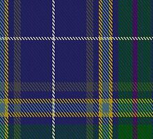 00488 Highland Blue Tartan by Detnecs2013