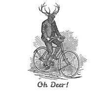 Oh Deer! Photographic Print
