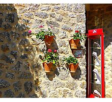 Geraniums And Necklaces Photographic Print