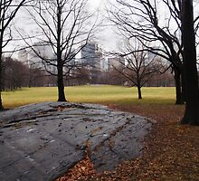 Central Park, NY by Romglish