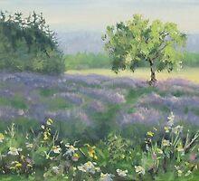 Lavender Field by Karen Ilari