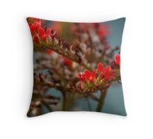 Fields of red on blue Throw Pillow
