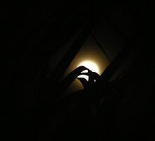 The Moon by gracestout2007