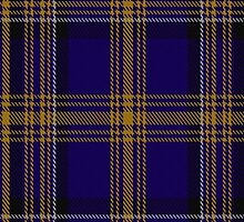 00461 Blue Matheson Hunting Tartan  by Detnecs2013