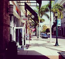 streets of sarasota by Octopusiscool