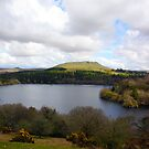Burrator Reservoir by lhyland