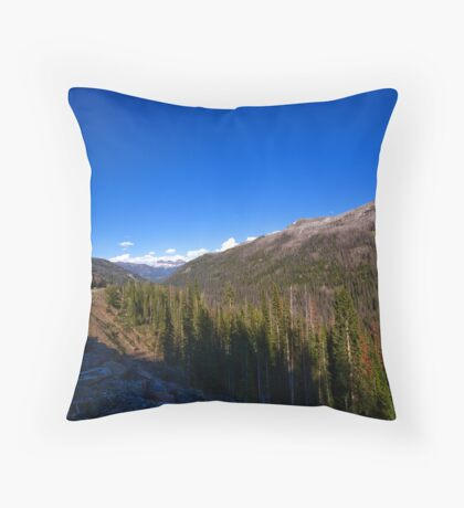~ Winding Road ~ Throw Pillow