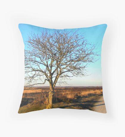 Winter Country Road Fochteloerveen Throw Pillow