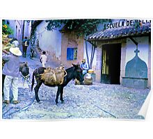 Burro and a School Poster