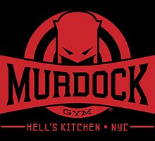 Murdock Gym by Eozen