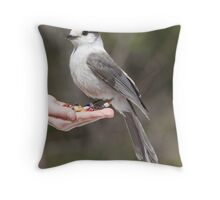 JayMe Throw Pillow