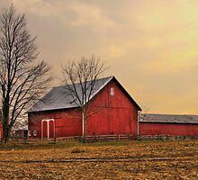 Rural Ohio by Kate Adams