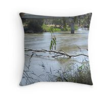 Murray River at the Bridge near Howlong Throw Pillow