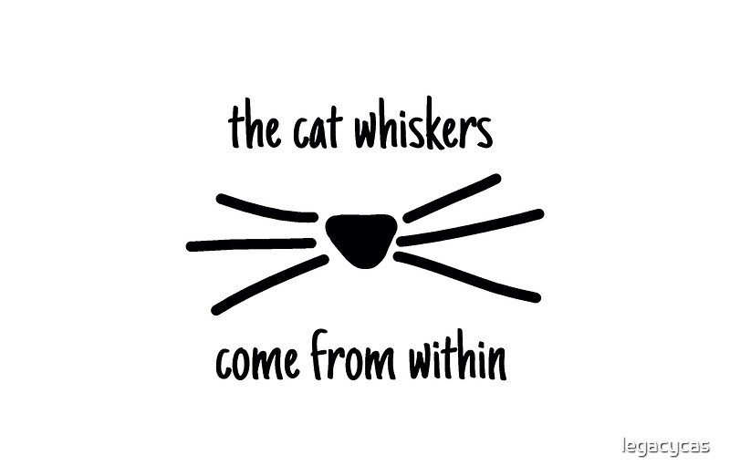 The Cat Whiskers Come From Within Video