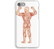 Human Muscular System Anatomy Etching iPhone Case/Skin