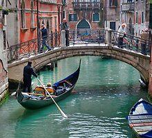 Everyday Venice by David Bradbury