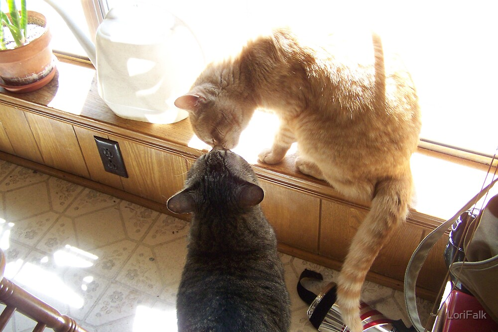 Butch and Sundance Kissing by LoriFalk
