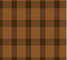 00426 Teddy Bear Tartan  by Detnecs2013
