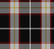 00423 Baron of Richecourt Tartan  by Detnecs2013