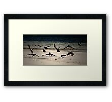 3rd Wing, 4th Squadron; Routine Coastal Patrol Framed Print