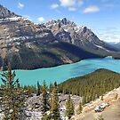 Peyto Lake - Banff National Park - Alberta - Canada by paolo1955
