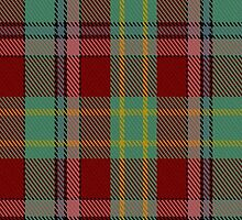 00419 Golden Broom Tartan  by Detnecs2013