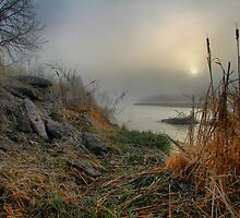 Foggy Cattails by Paul  Threlkel