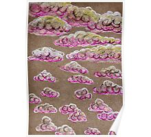 Pink Clouds in the Grey Sky Poster