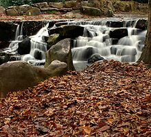 Virginia Waters Cascades V by simonj
